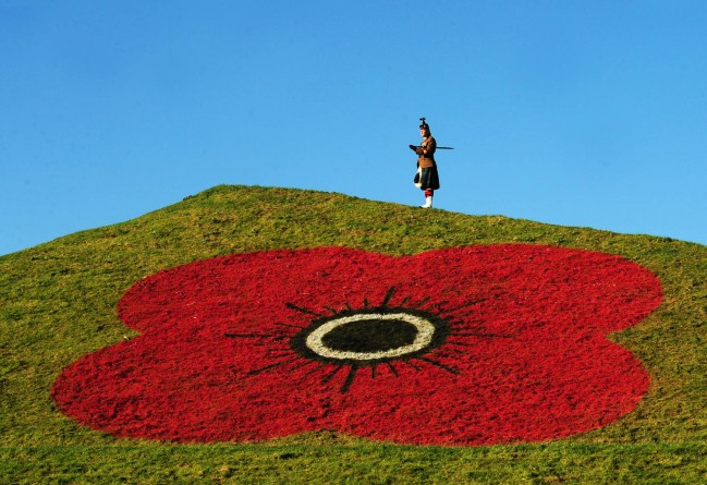 Remembrance ontop of giant poppies