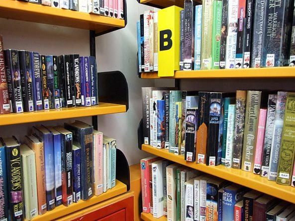 Общество: Власти Уолсолла хотят сэкономить городской бюджет, закрыв 15 библиотек из 16