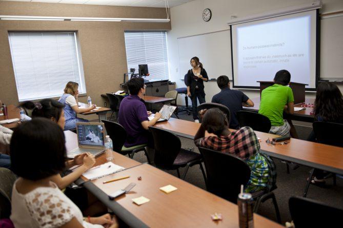 Общество: Школьники из этнических групп стали учиться лучше