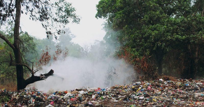 Происшествия: Жителей Сифорда предупредили, что ядовитый запах может вернуться