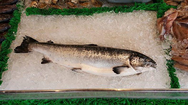 Здоровье и красота: В лососе, который продают Tesco и Sainsbury's, в 20 раз больше паразитов, чем допускается