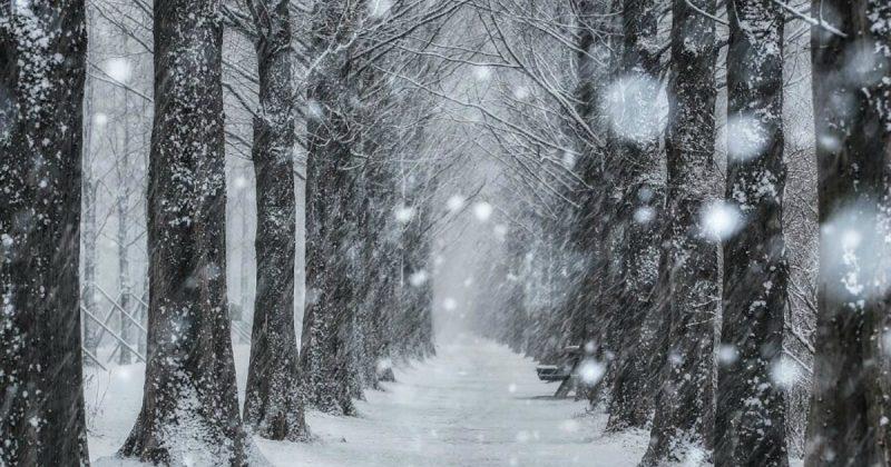 """Погода: В некоторых регионах Британии прошло """"Белое Рождество"""", и впереди еще больше снега"""