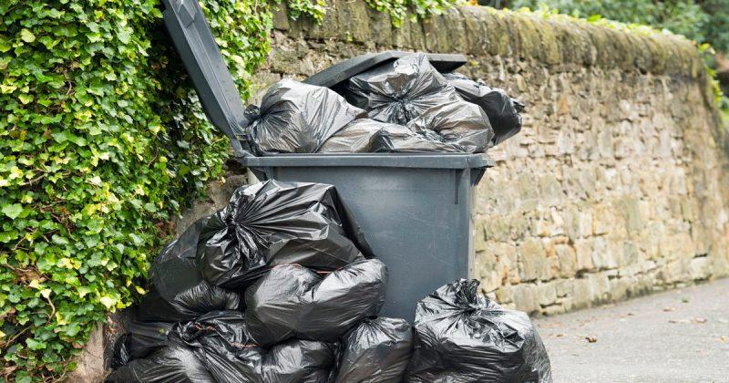 Лайфхаки и советы: Нерешенная вовремя проблема мусора может стоить вам £2500. Как этого избежать