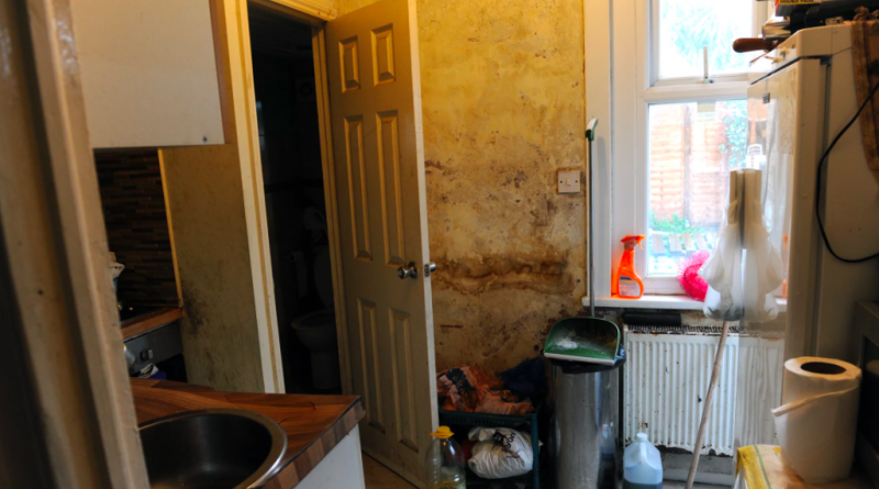 squalid-rented-homes