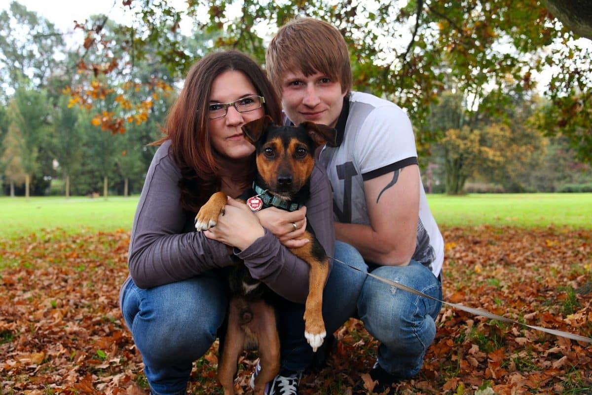 Нужна ли собака супружеской паре? Мы приведем вам доказательства того, что собака в семье необходима