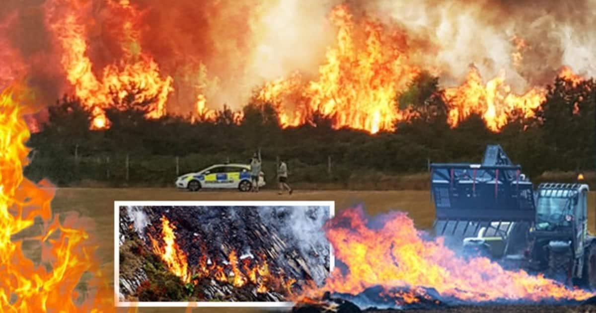 Британия горит! Лесные пожары охватили всю страну, которая переживает самые жаркие дни в истории