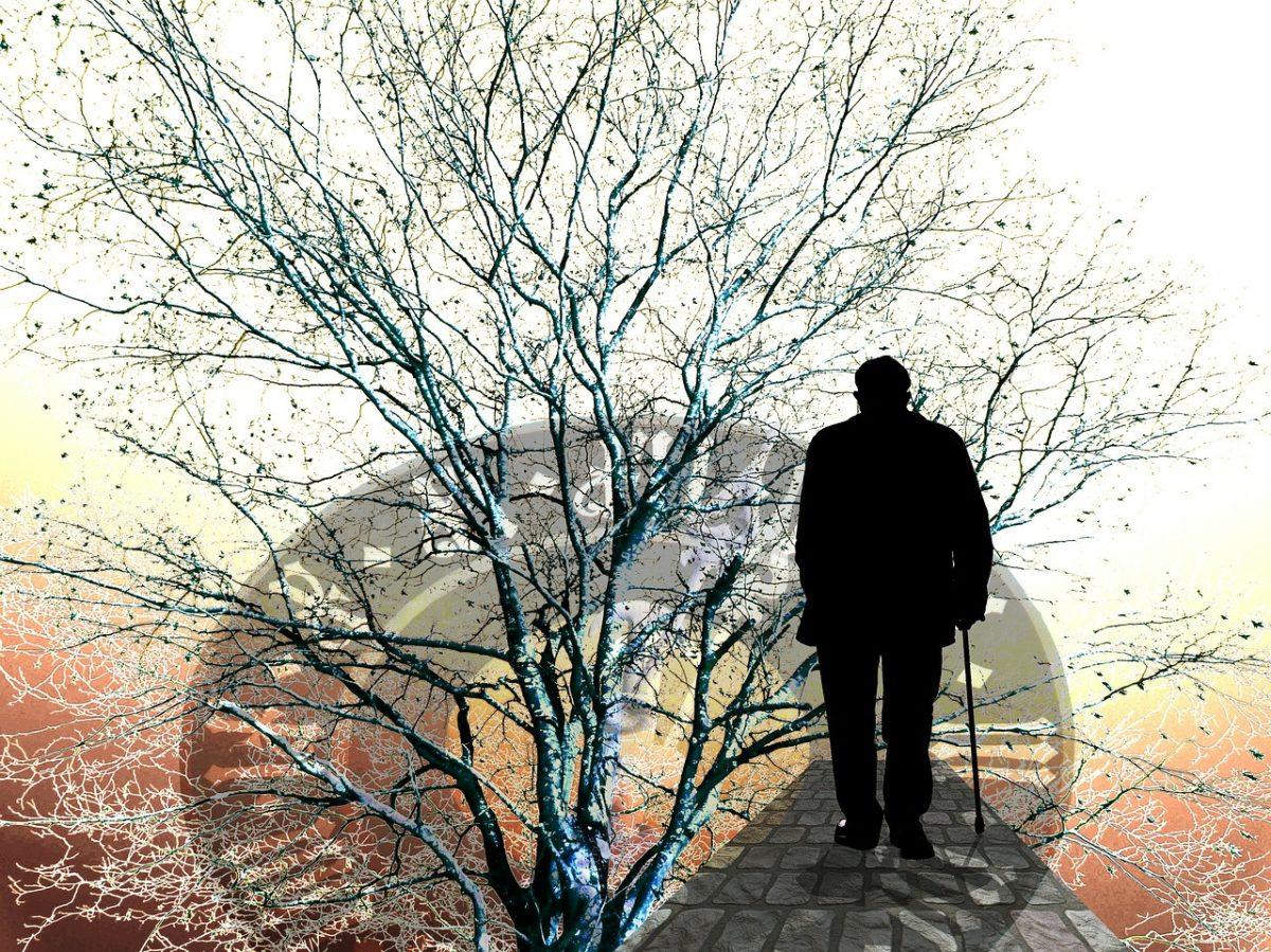 """коллаж """"время, дерево жизни и фигура пожилого мужчины"""""""