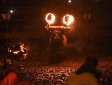 бык с факелами на голове