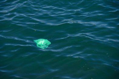 пластиковый пакет в море
