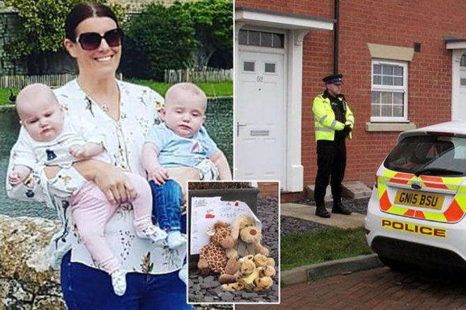 Происшествия: Жительница Великобритании утопила мешавших ей малышей-близнецов : Общество Newsland