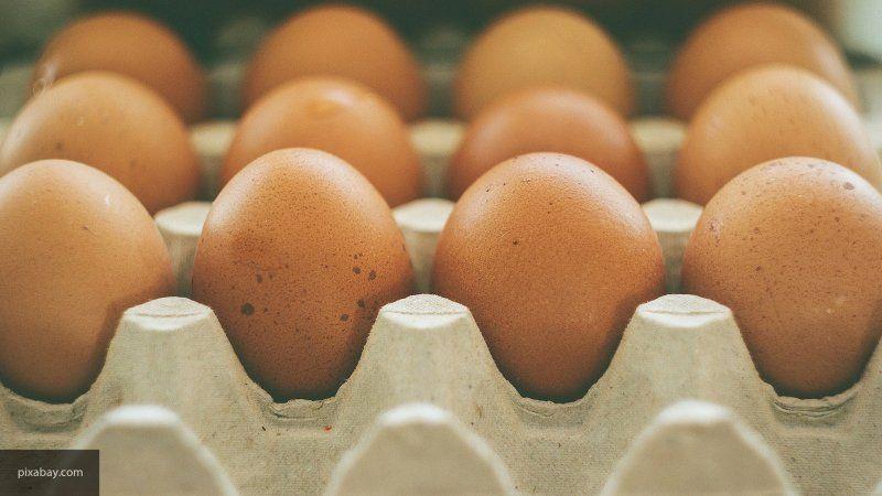 Британка лишилась зрения из-за сваренных в микроволновке яиц