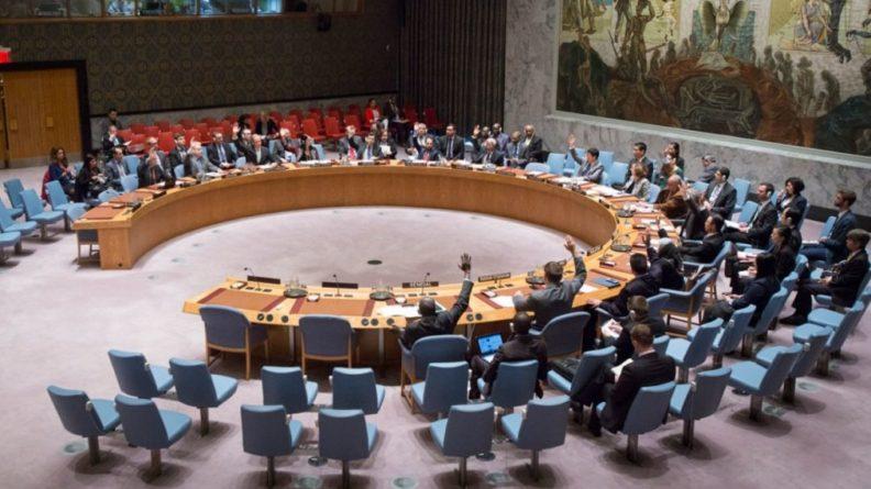 Общество: Эксперт рассказал, каким будет решение СБ ООН по операции Турции против курдов-террористов