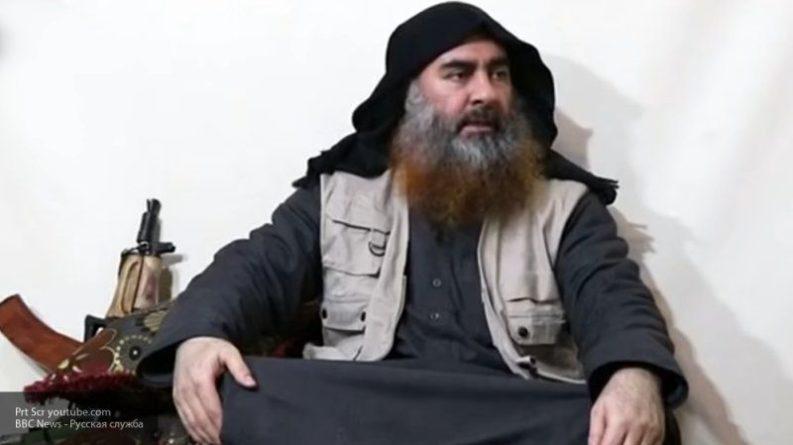 """Общество: ФАН развеял слухи агентства The Guardian о """"преемнике"""" аль-Багдади в Сирии"""