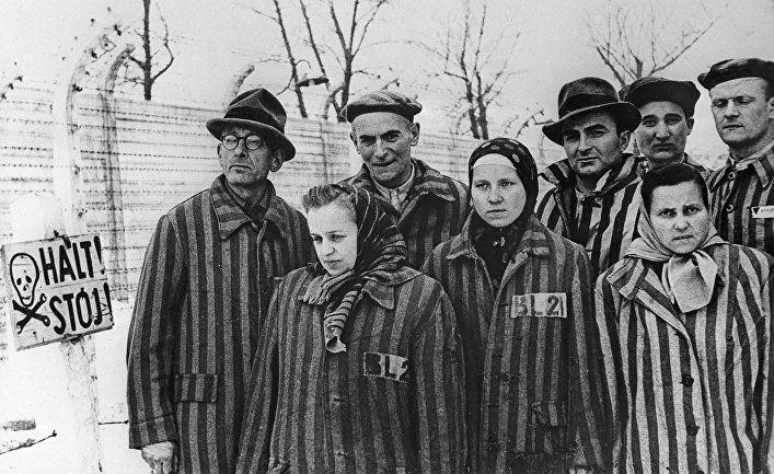 Общество: Der Spiegel (Германия): как пережившие Освенцим видят сегодняшнюю политическую ситуацию