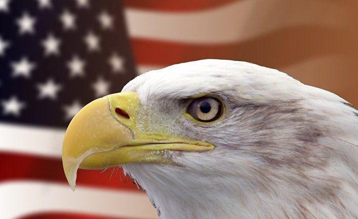 Общество: Досадный «Рашагейт»: почему Вашингтон до сих пор сосредоточен не на том иностранном влиянии (The National Interest, США)