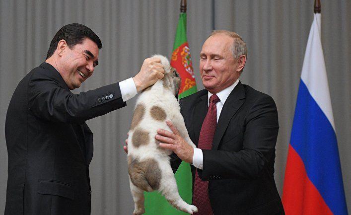 Общество: The Times (Великобритания): президент Туркменистана Бердымухамедов приказывает жечь траву, чтобы остановить коронавирус
