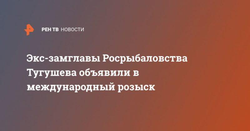 Общество: Экс-замглавы Росрыбаловства Тугушева объявили в международный розыск