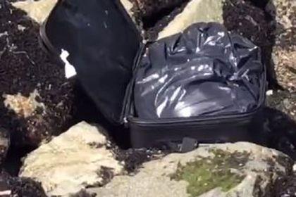 Общество: Юный блогер снимал видео про загадочный чемодан на берегу и нашел труп