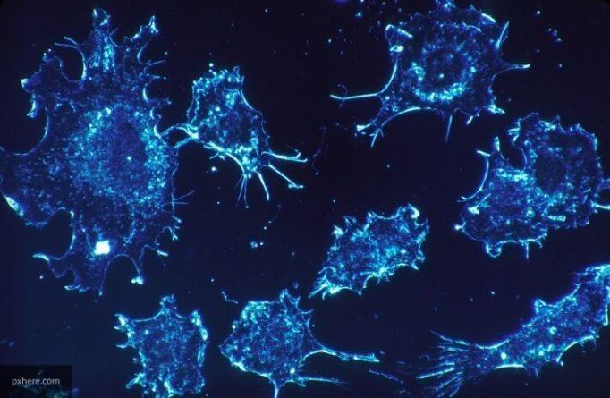 Общество: Ученые предложили женщинам в Британии ежегодно обследоваться на рак