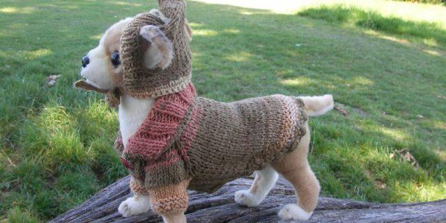СКИДКА! Одежда для собачек и кошечек.